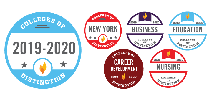 2019-2020 College of Distinction accolades: New York, Business, Education, Career Development, and Nursing